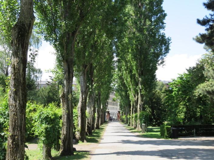 Assistens Kirkegård, Copenhagen, Denmark