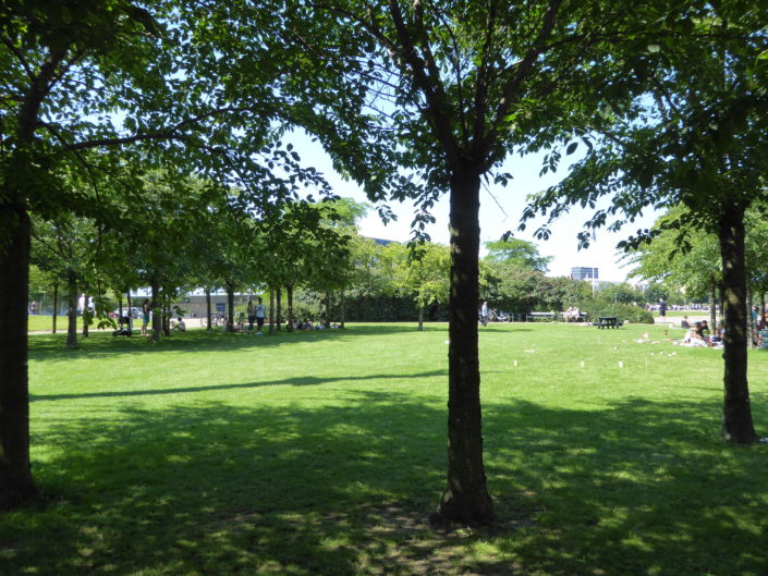 Langelinie - green space