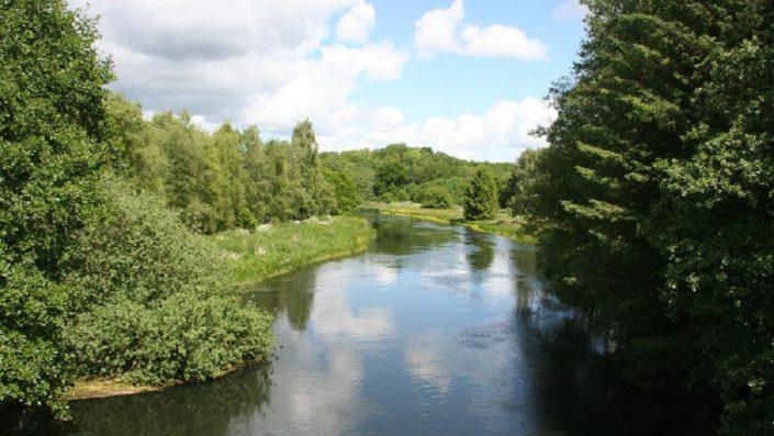 Stream in Denmark (Gudenåen)